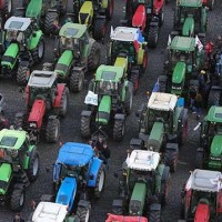 Have you ever seen a tractor rally?