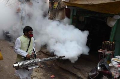 Sri Lanka's health authorities warn of rise in dengue infections
