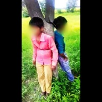 Dalit boys tied to tree, beaten for plucking 'jamun'