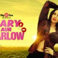 Arshi Khan: Great time to be on the web